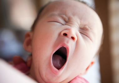 English Learner's Word of the Day: yawn - Learner's Dictionary