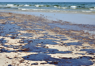 The oil spill was an environmental catastrophe.