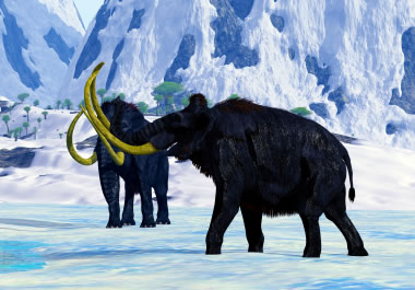 The woolly mammoth has been extinct for thousands of years.