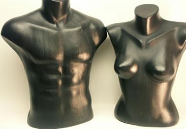 Models of torsos