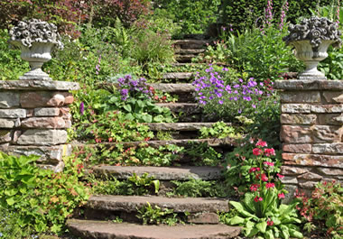 The stairs need some TLC.