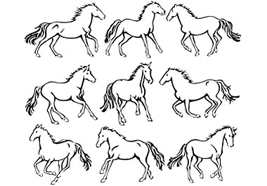 Outline drawings of horses