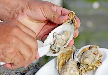 Some people consider oysters to be a delicacy; other people think they're yucky.