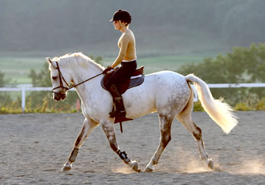 A rider sitting with good posture.