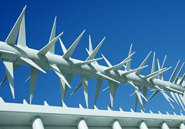 A fence with spikes along the top