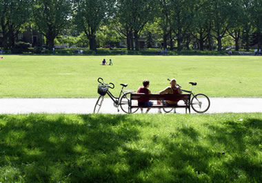 A few people enjoying a park on a sunny day