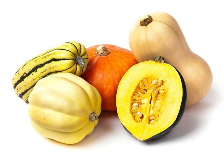 Ten Words from the Harvest : Squash